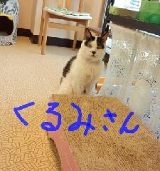 1440336688030.jpg