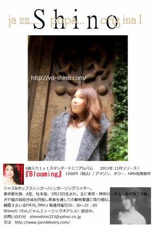 Shino_540x800