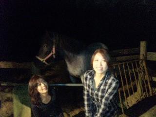 月明かりで乗馬