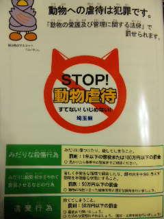 埼玉県動物指導センター訪問