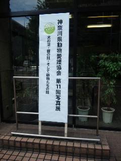 神奈川県動物愛護協会写真展