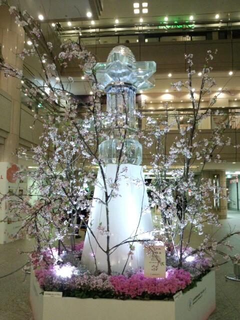渋谷→横浜(^-^)