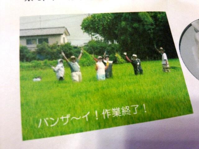 ダンボールと、草刈り大会の御案内
