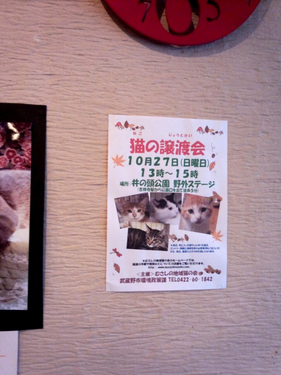 吉祥寺猫まつり